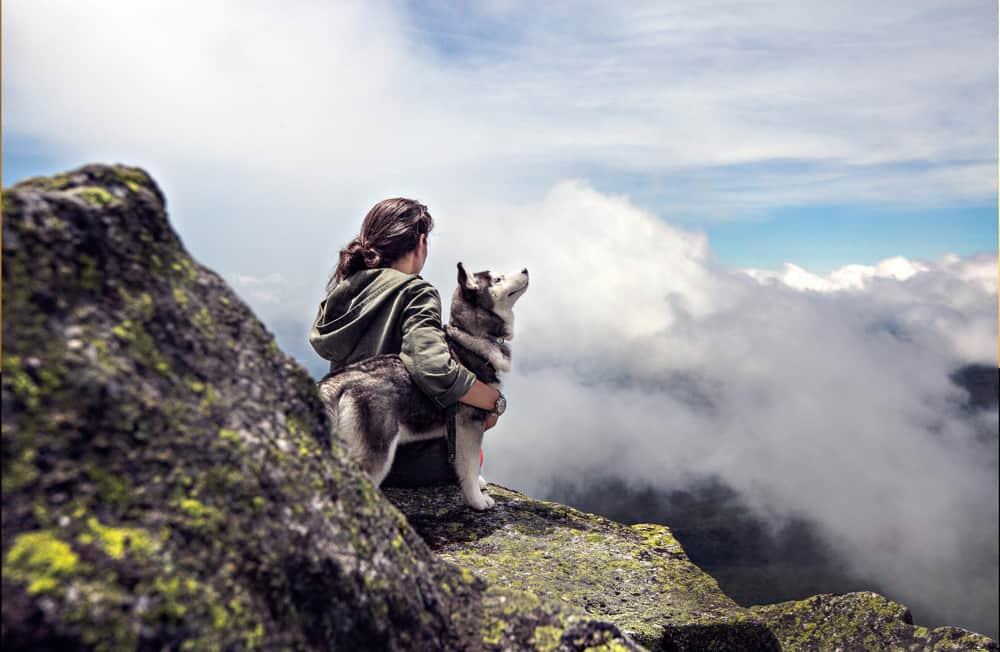 Pes a človek